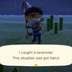 Con el truco de la tarántula podrás conseguir unas bayas extra en Animal Crossing