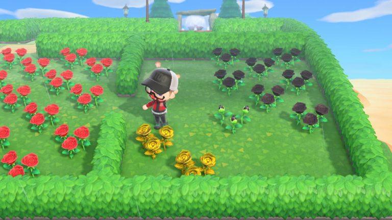 Cómo crear rosas doradas en Animal Crossing: New Horizons