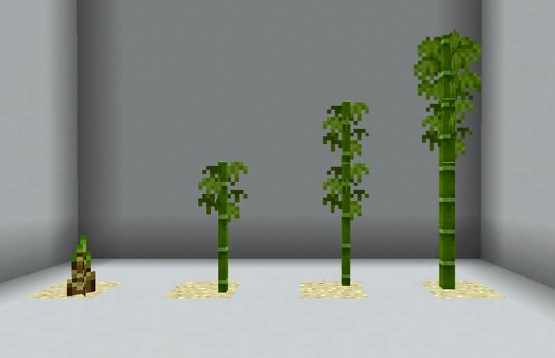 bambu guia minecraft