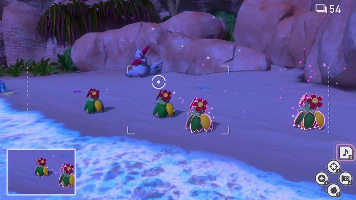 Estos son los pokémon que aparecen en la playa (de noche) de New Pokémon Snap